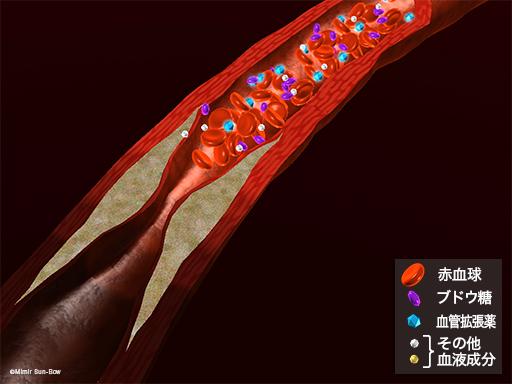 血管拡張薬2