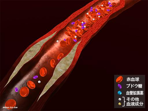 血管拡張薬3