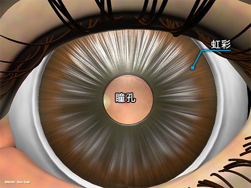 散瞳1[APNG]